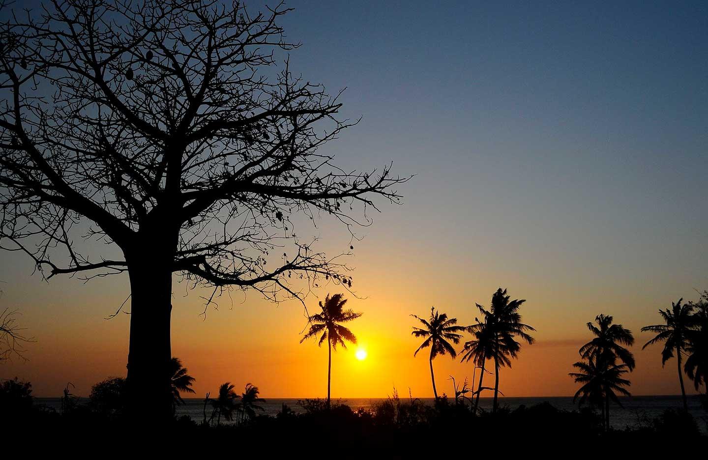 mafia_island_tanzania_11