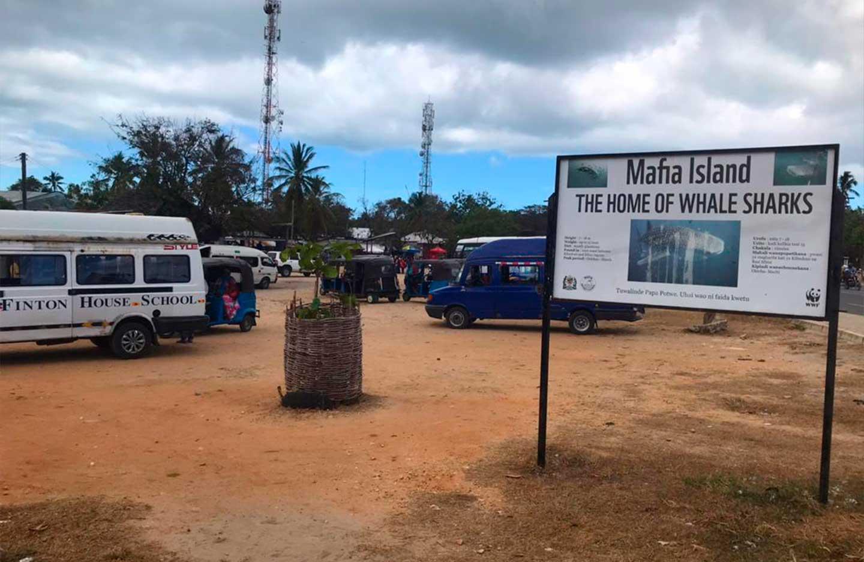 mafia_island_tanzania_7